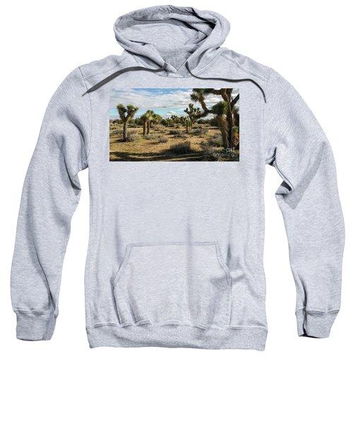 Joshua Tree's Sweatshirt