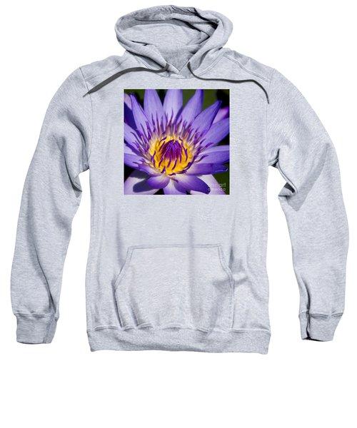 Journey Into The Heart Of Love Sweatshirt