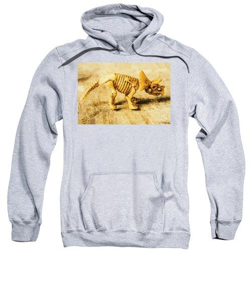 Jurassic Toy Triceratops Sweatshirt