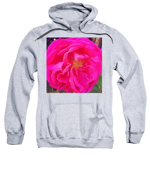 Just A Rose...#floral #flowers #pink Sweatshirt