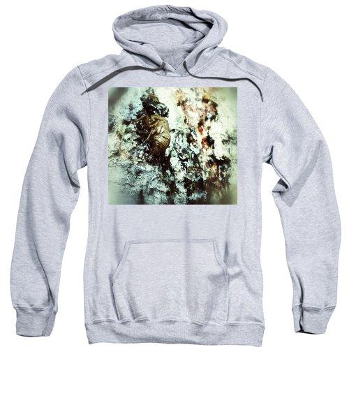 Just A Shell Sweatshirt