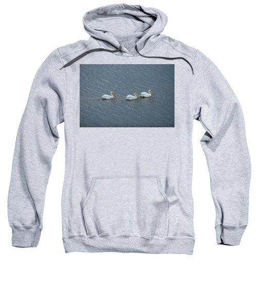 Triple Pelicans Lake John Swa Co Sweatshirt