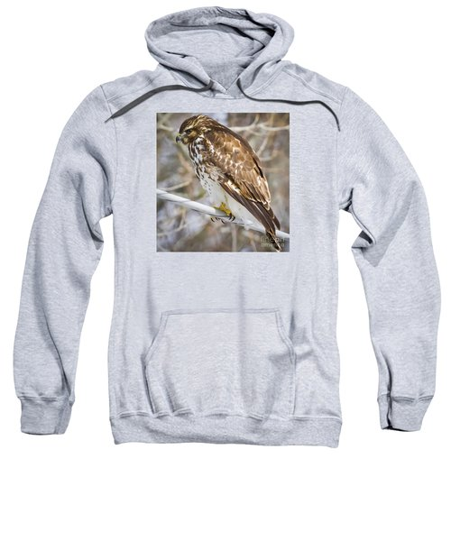 Sweatshirt featuring the photograph Juvenile Red-shouldered Hawk  by Ricky L Jones