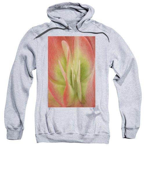Kalanchoeluciaesucculent Sweatshirt