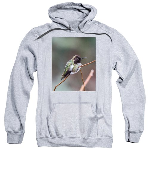 Karisa's Hummingbird.2 Sweatshirt