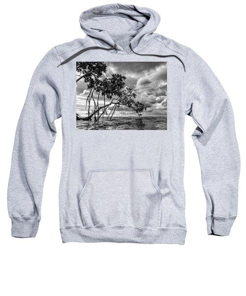 Key Largo Mangroves Sweatshirt