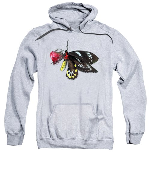 Key West Butterfly 12 Sweatshirt