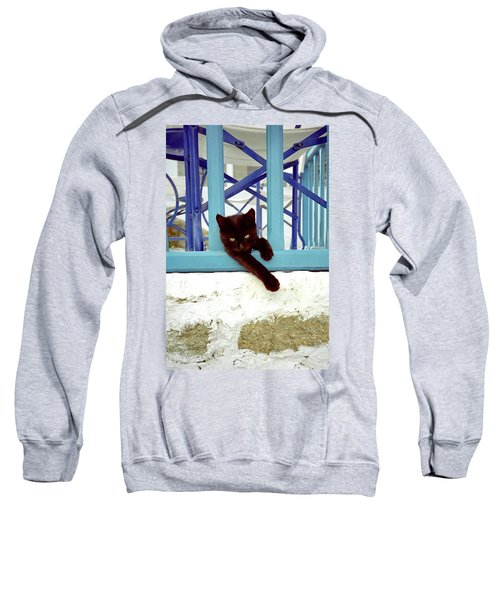 Kitten With Blue Rail Sweatshirt