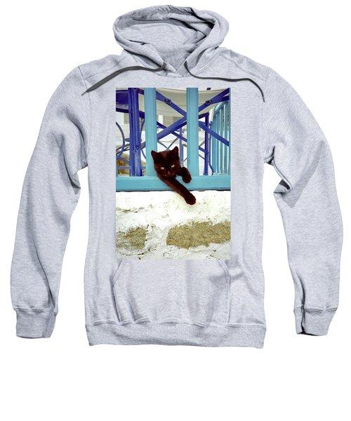 Kitten With Blue Rail Sweatshirt