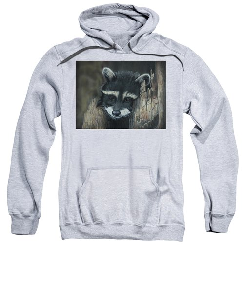 Kit...the Baby Raccoon Sweatshirt