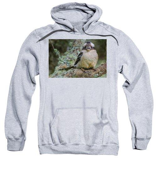Kookaburra 3 Sweatshirt