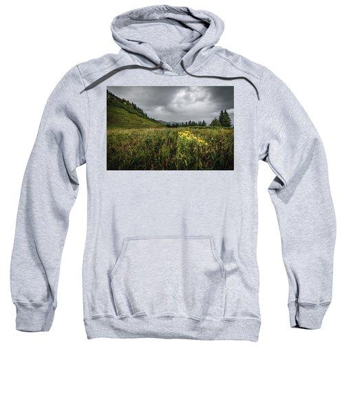 La Plata Wildflowers Sweatshirt