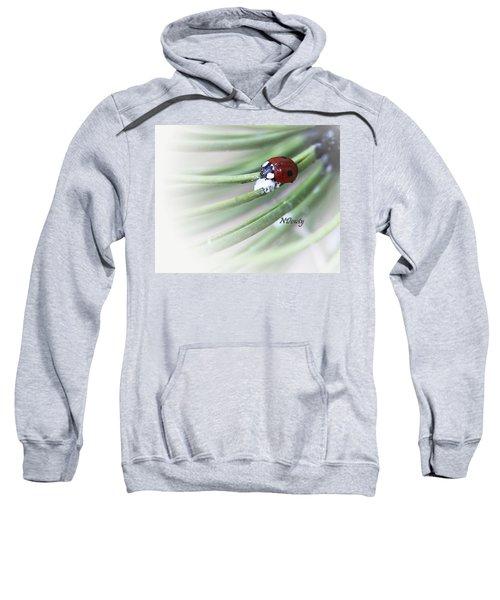 Ladybug On Pine Sweatshirt