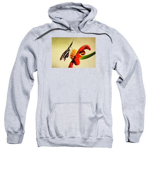 Landing Pad Sweatshirt