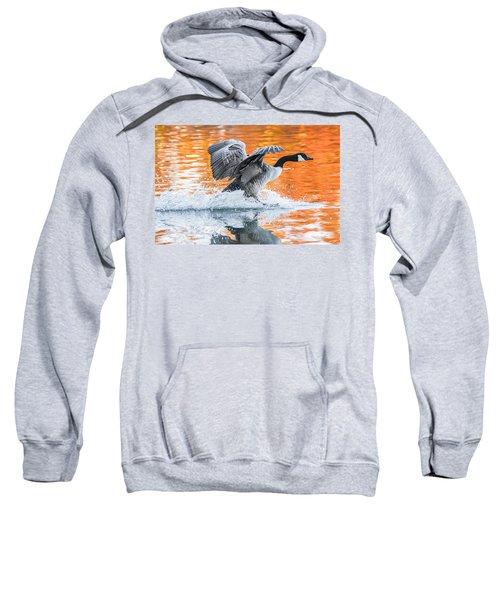 Landing Sweatshirt