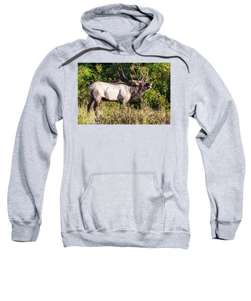 Large Bull Elk Bugling Sweatshirt