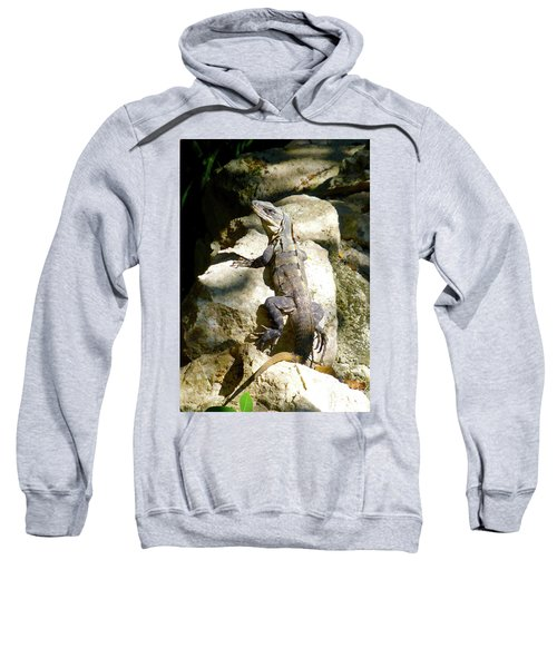 Sweatshirt featuring the photograph Large Lizard M by Francesca Mackenney