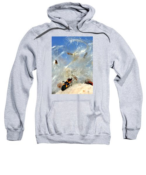 Large Milkweed Bug Sweatshirt