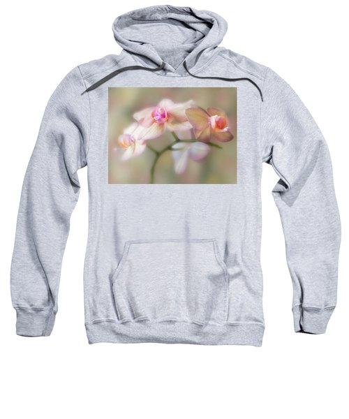Lasting Forever. Sweatshirt