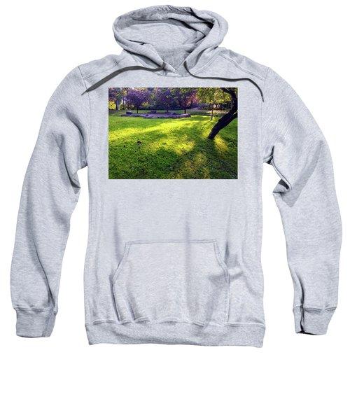 Late Summer Light Sweatshirt