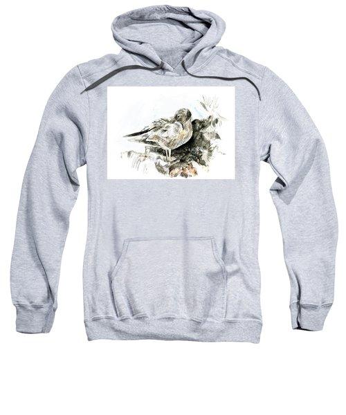 Lava Gull Sweatshirt