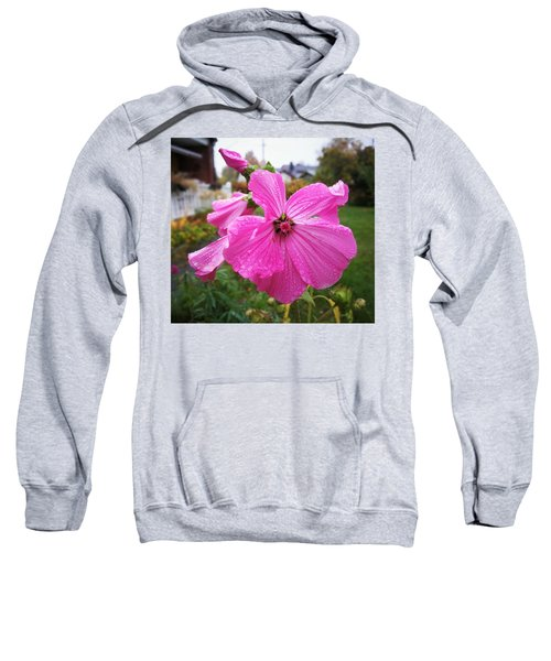 Lavatera Flower Sweatshirt