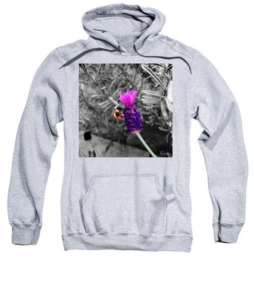 Lavender Harvest Sweatshirt