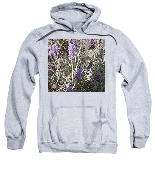 Lavender Moment Sweatshirt by Winsome Gunning