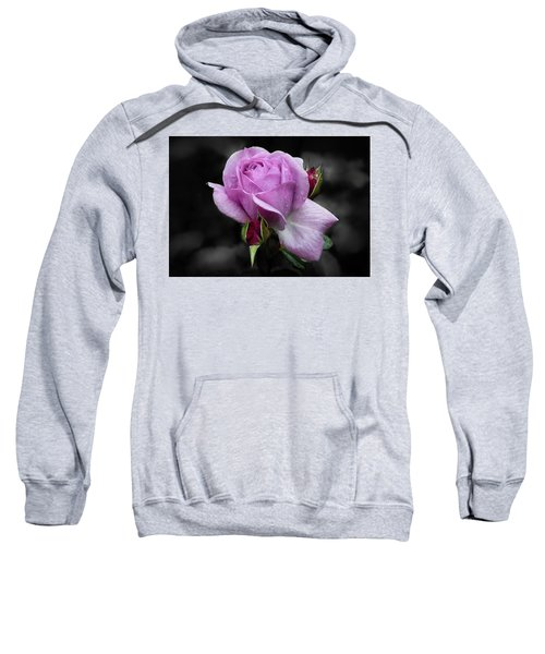 Lavender Rose Sweatshirt