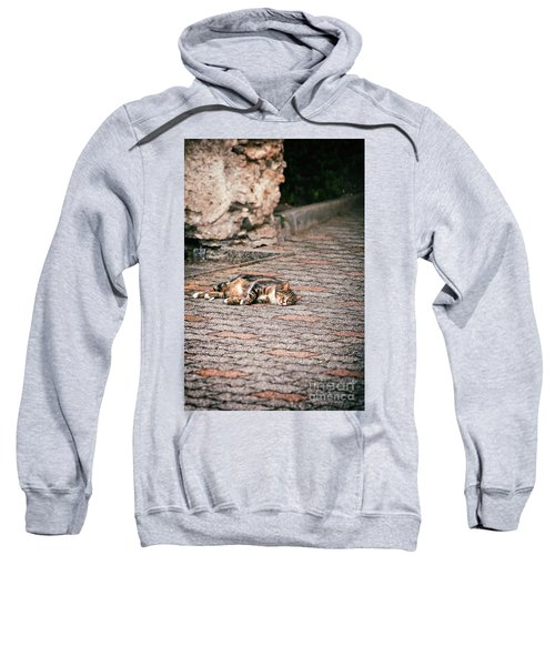 Sweatshirt featuring the photograph Lazy Cat    by Silvia Ganora
