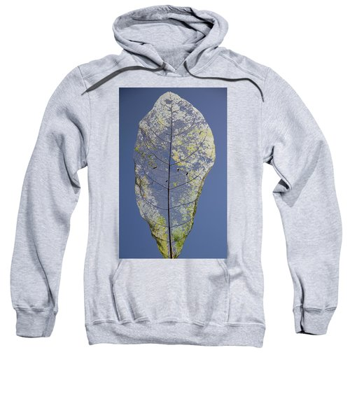 Sweatshirt featuring the photograph Leaf by Debbie Cundy