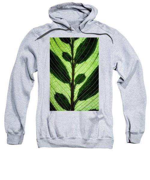 Leaf Detail Sweatshirt