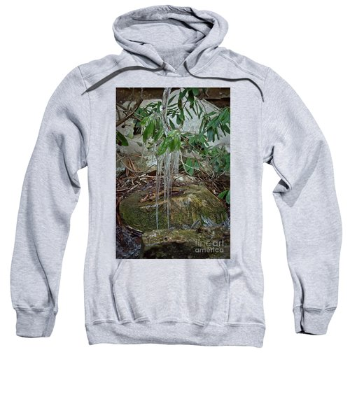 Leaf Drippings Sweatshirt