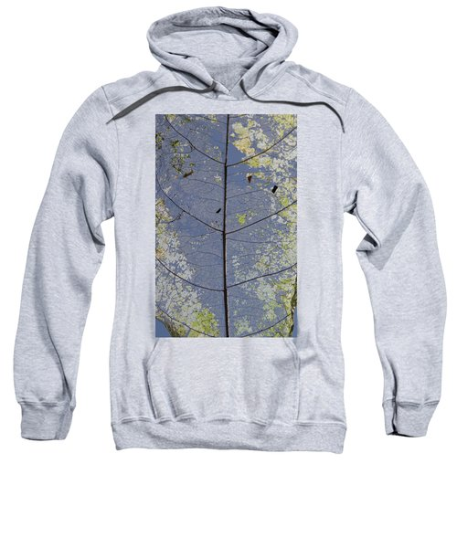 Sweatshirt featuring the photograph Leaf Structure by Debbie Cundy
