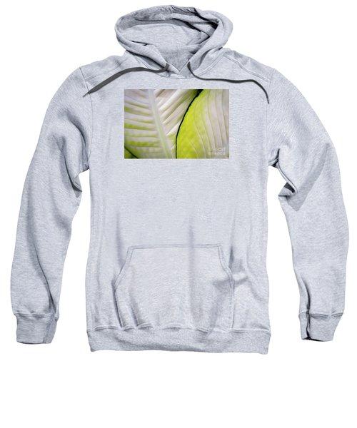 Leaves In White Sweatshirt