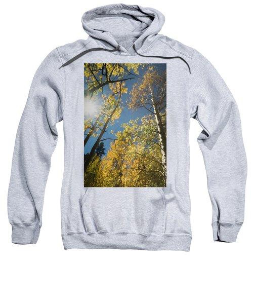 Leaves Of Fall Sweatshirt