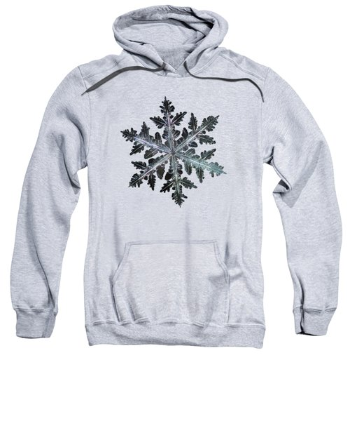 Leaves Of Ice, Panoramic Version Sweatshirt