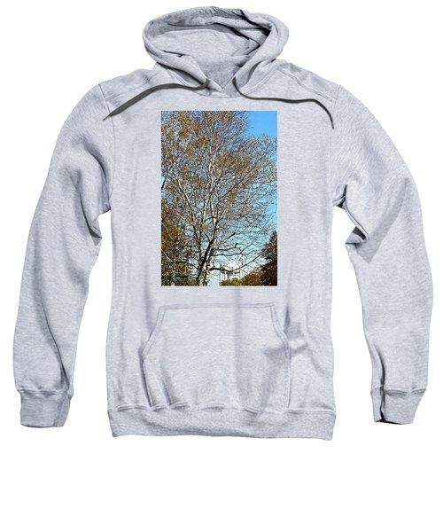 Leftover Sweatshirt by Jana E Provenzano
