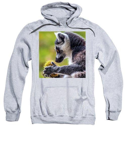 Lemur And Sweet Chestnut Sweatshirt