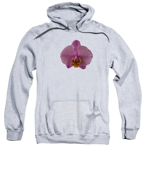 Leopard Prince Phalaenopsis Orchid Sweatshirt by Zina Stromberg