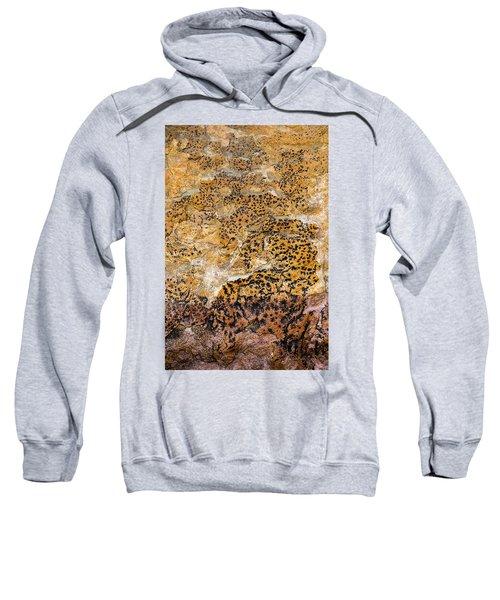 Sweatshirt featuring the photograph Lichen Abstract, Bhimbetka, 2016 by Hitendra SINKAR