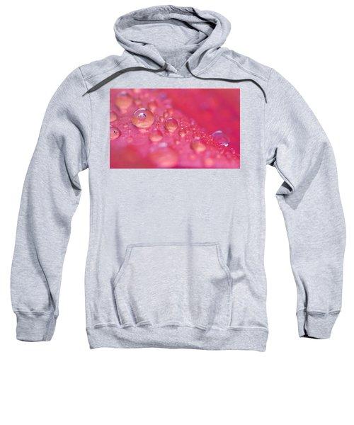 ...like A Dream Sweatshirt
