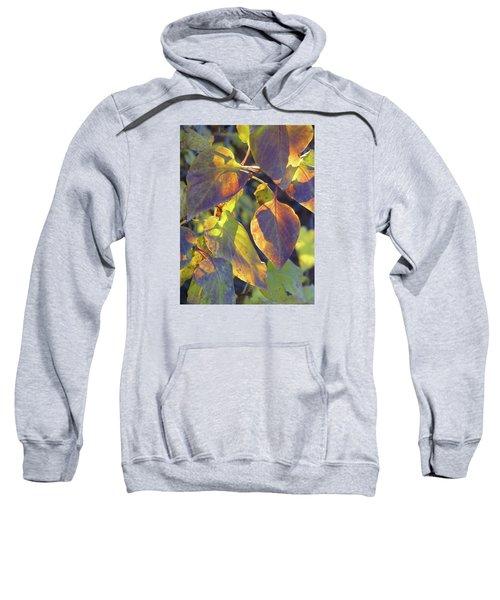 Lilac Leaves Sweatshirt
