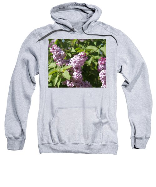 Lilacs 5544 Sweatshirt
