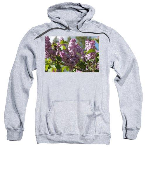 Lilacs 5548 Sweatshirt
