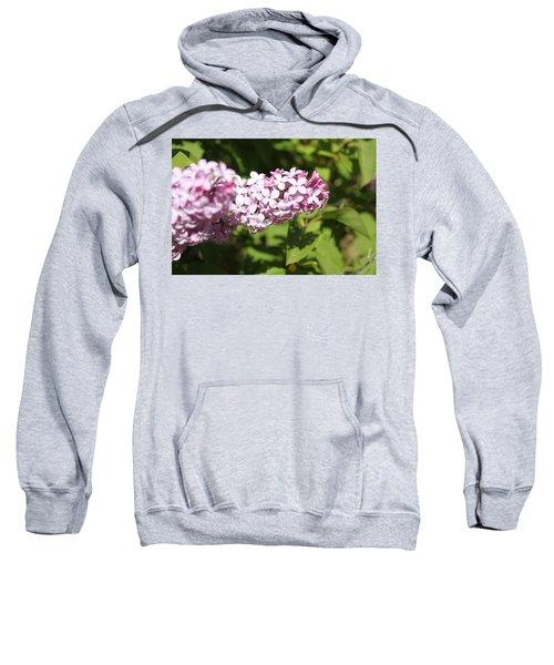 Lilacs 5550 Sweatshirt