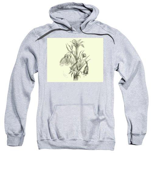 Liliaceae Of Sacsahuaman, Amaryllis Aurea, Crinum Urceolatum, Pancratium Recurvatum Sweatshirt