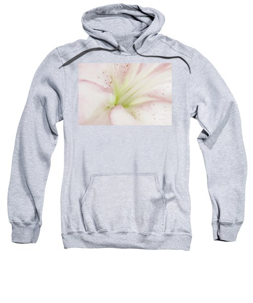 Lily Centered Sweatshirt