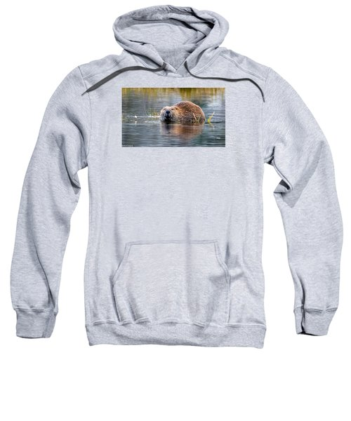 Lily Lake Beaver Sweatshirt