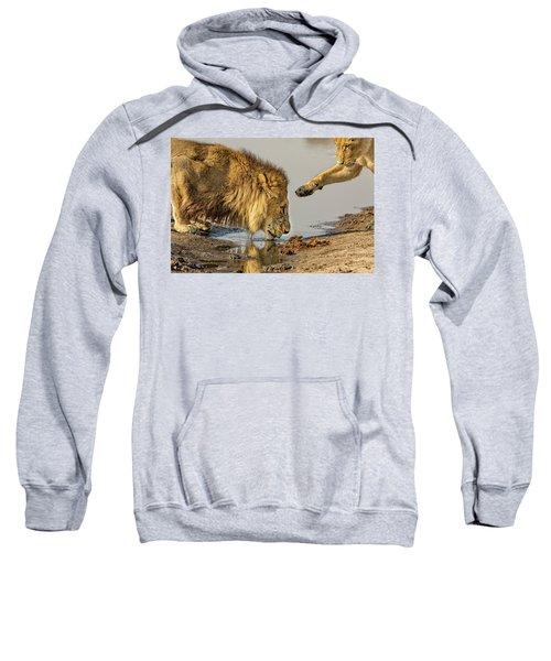 Lion Affection Sweatshirt
